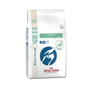 Royal Canin Dental 3,5kg kot